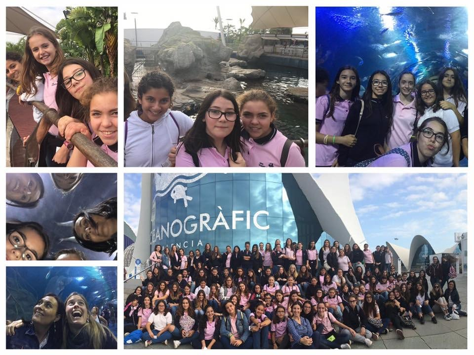 Viajes de estudio - Oceanogràfic València